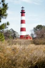 Assateague Light